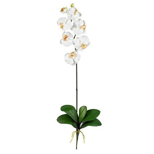 Phalaenopsis Silk Orchid Flower w/Leaves (6 Stems)