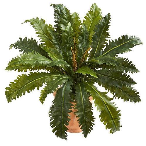 Marginatum Artificial Plant in Terra Cotta Planter