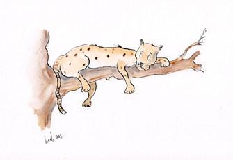 The leopard. (A nonsense poem.)