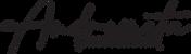 Logo Andremeta