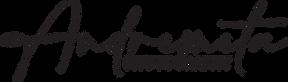 "Logo of ""Andremeta"""