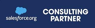 SFDO Partner Badge 2021-Horizontal.png