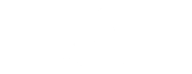 Adidas Logo.png