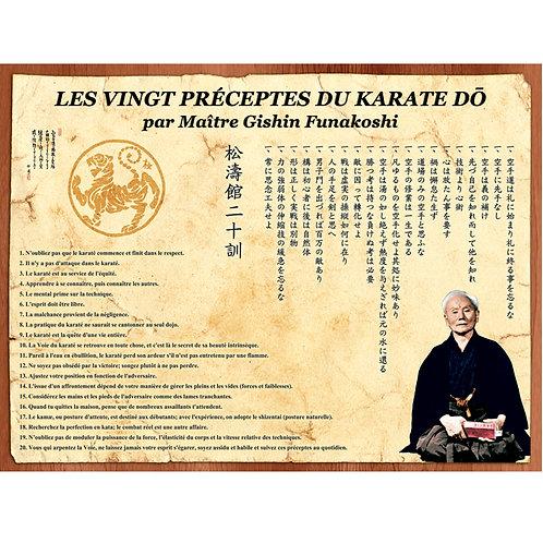FUNAKOSHI 20 PRINCIPES 18.5X28-FRENCH