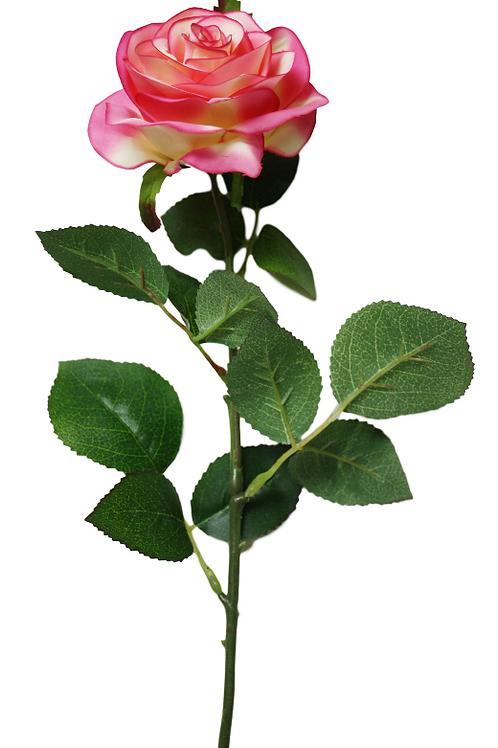 Item # 30156-Hot Pink