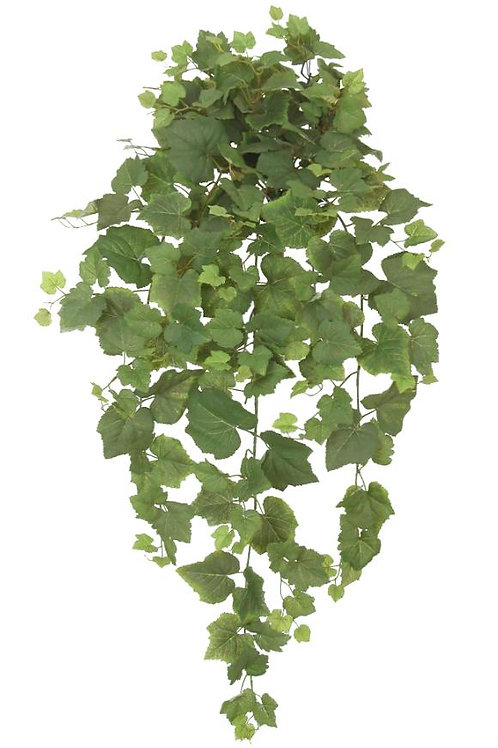 "36"" Grape Ivy Hanging Bush x 12 w/ 250 Leaves"