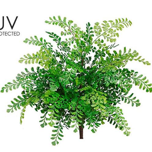 "19"" UV Protected Maidenhair Fern Bush"