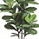 """Thumbnail: Silk Fiddle Leaf Fig Plant in pot - 70"""" Tall"""