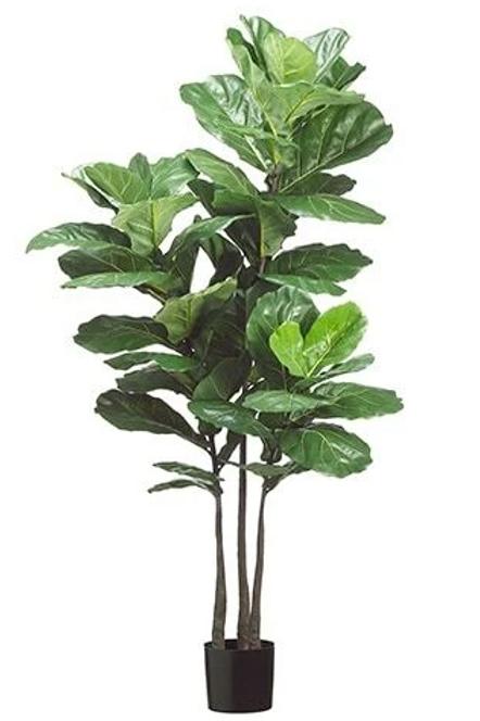 "Silk Fiddle Leaf Fig Plant in pot - 70"" Tall"