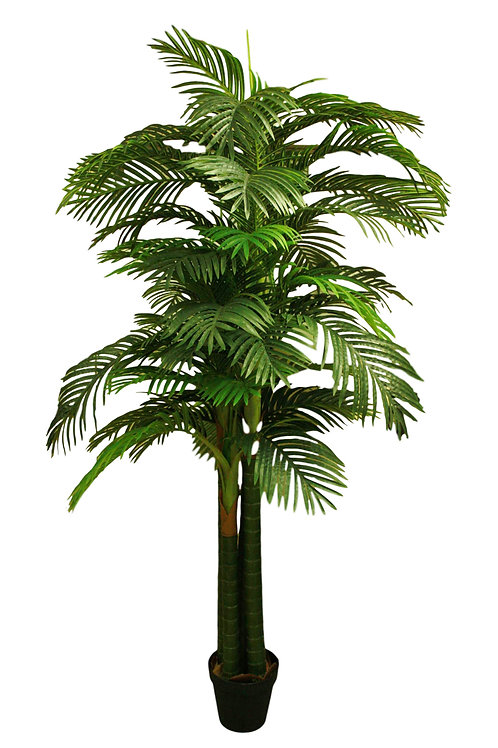 8' Shead Real Touch Areca Palm Tree