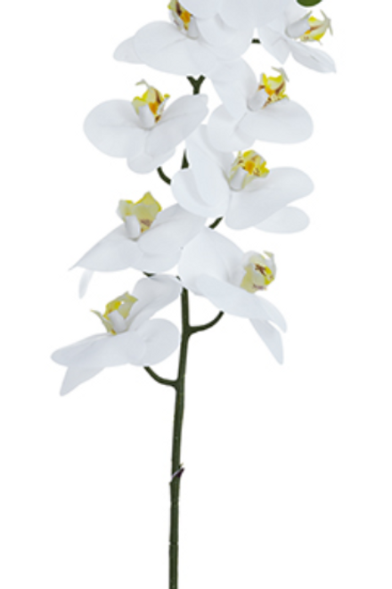 "Real Touch Phalaenopsis Orchid Spray -36"" Long"