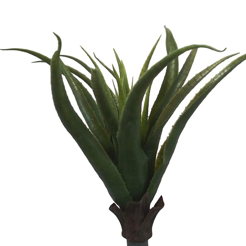 Plastic Aloe Plant with 22 Leaves