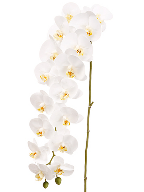 "Real Touch Phalaenopsis Orchid Spray with 2 Buds -45"" Long"