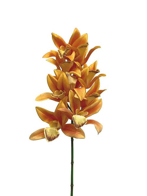 "28"" Cymbidium Orchid (FO7133)"