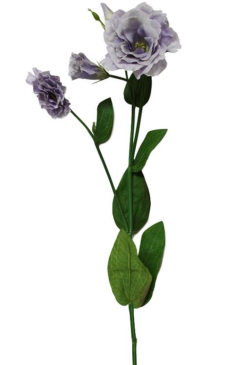 Item # 392977-Lavender