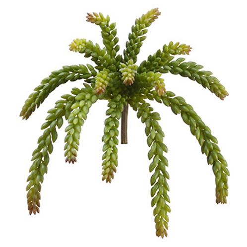 "12"" Soft Sedum Plant Green"