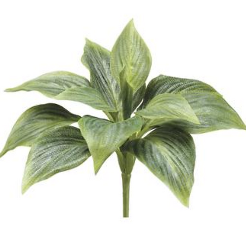 "8"" H Succulent Pick"
