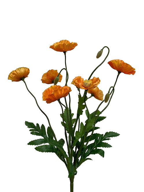 """15"""" Poppy Bush x6 (FBP279)"""
