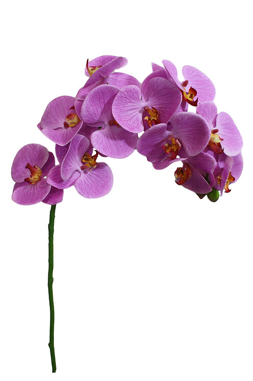 """37"""" Real Touch Butterfly Orchid"""