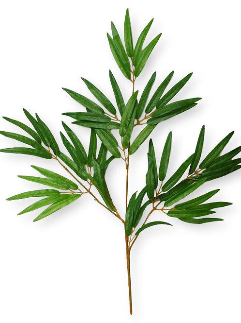 Bamboo Leaf/ per dozen