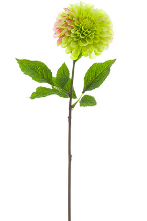 "24"" Silk Dahlia Spray - Green"
