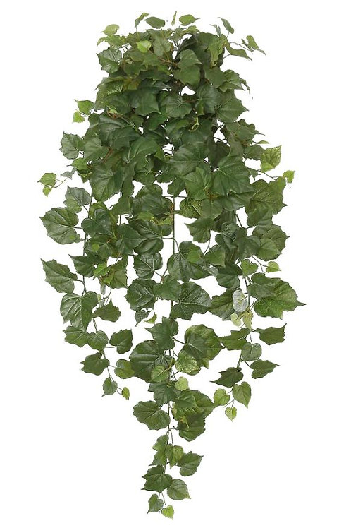 "36"" Cottonwood Hanging Bush x 12 w/ 250 Leaves"