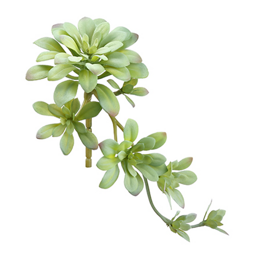 "11.8"" Faux Soft Aeonium Pick  Green Gray"