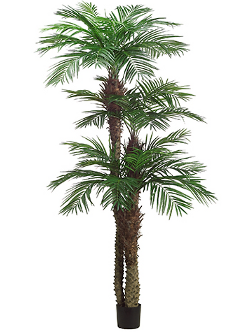 9' Tropical Areca Palm Tree x 3 with 1364 Leaves