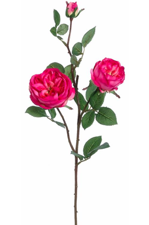 "29"" Silk Cabbage Rose Spray"