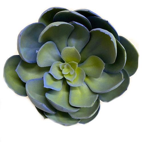 """6"""" D x 5"""" H Succulent Pick"""