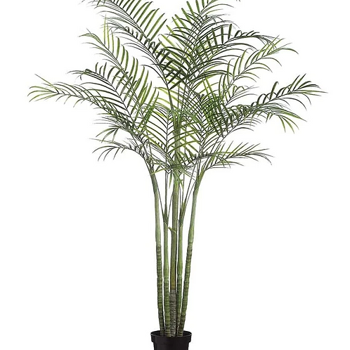 """96"""" UV Protected Palm Tree in pot"""