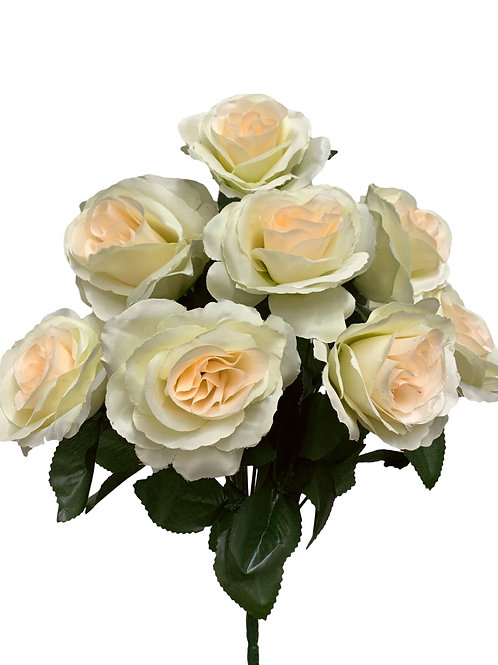 "17"" Satin Rose Bush x 12 (INT398-Beige)"