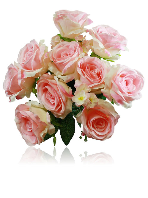 "20"" Light Pink Rose Bush x 10"