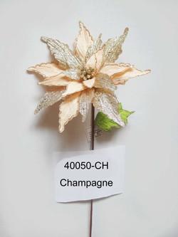 40050-CH