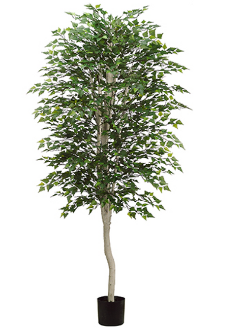 Artificial Birch Tree in pot - 7' Tall