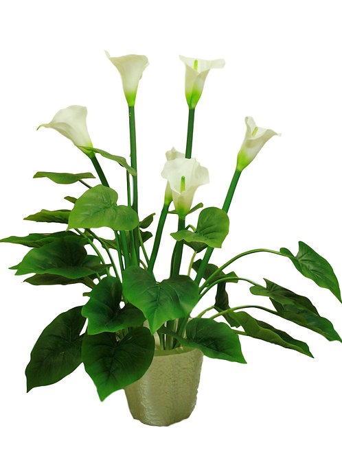 2.5' Real Touch Calla Lily Plant