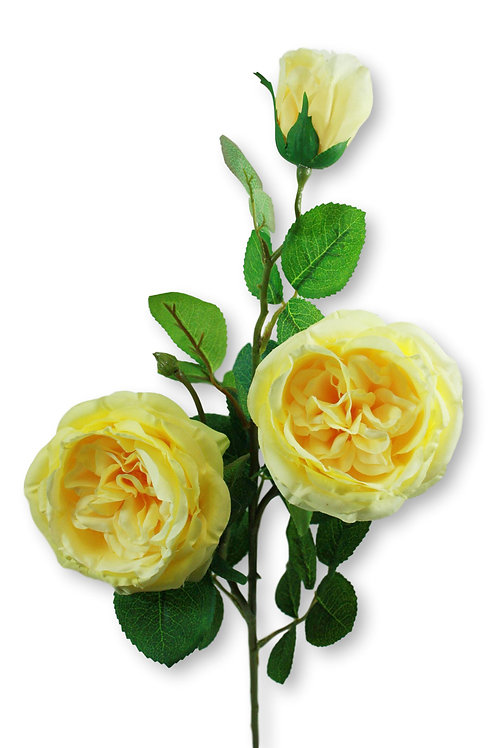 "Silk Yellow Austin Rose Spray x 3 - 30"" Long"