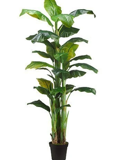 Real Touch Banana Tree in pot - 7.5' Tall