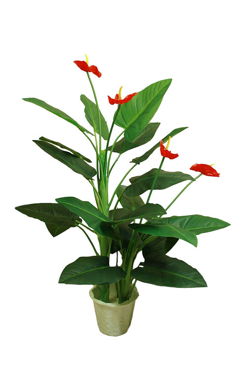 4' Real Touch Anthurium Plant