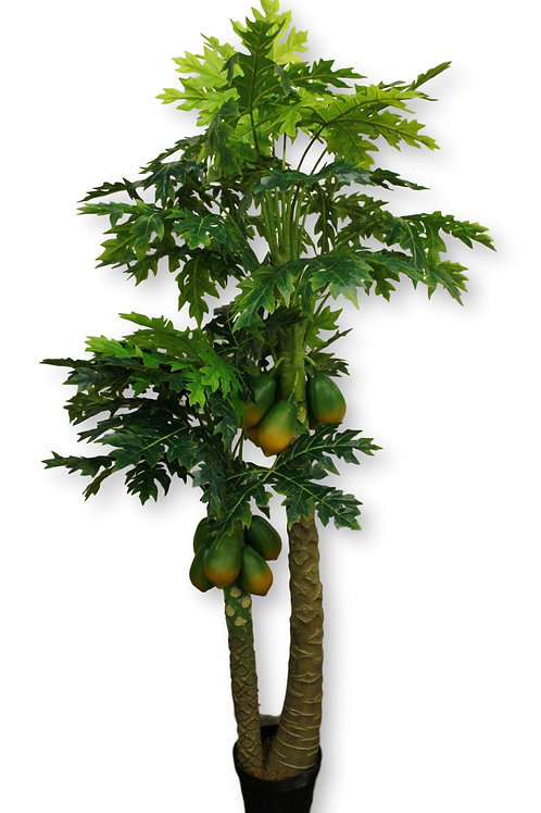 "6.5' Real Touch Paw Paw Tree w/10"" pot"
