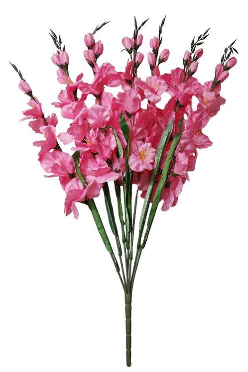 FB654- Pink