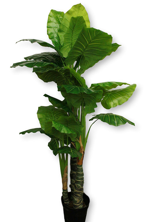 7.5' Real Touch Taro Tree in pot