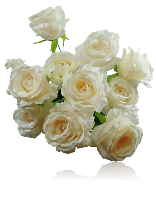 "20"" Beige Silk Rose Bush x 10"