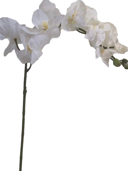 """39"""" Real Touch Orchid Stem"""