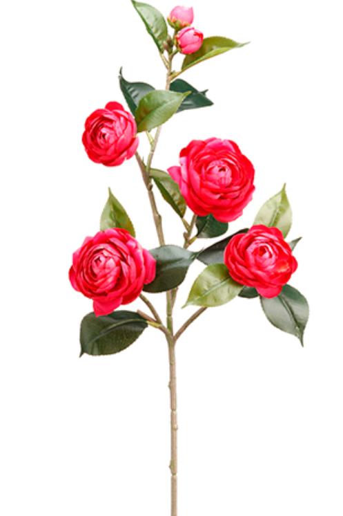 "29.5"" Camellia Spray in Beauty Color"