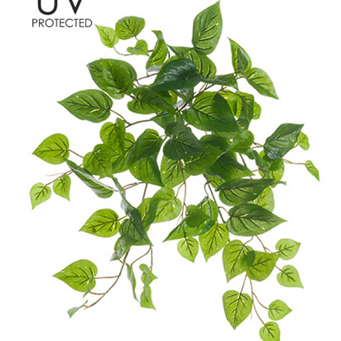"""19""""UV Protected Philodendron Bush"""