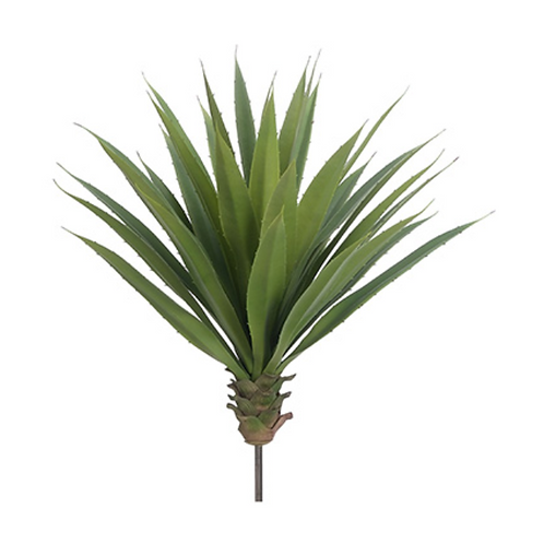 "22""Hx22""D Agave Plant Green"