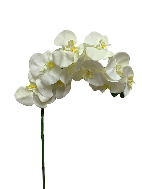 """37"""" Butterfly Orchid (F07309-CR)"""