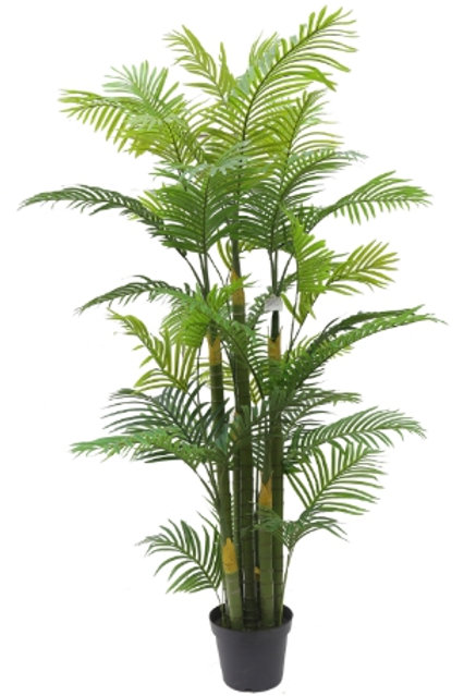 6.5' Real Touch Areca Palm Tree
