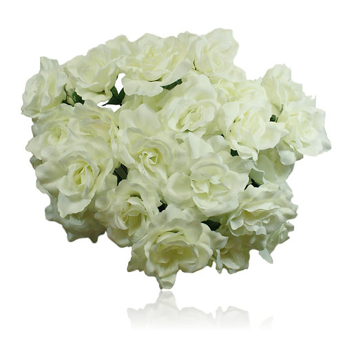 "Cream Silk Rose Bush x 24 -24"" Long"